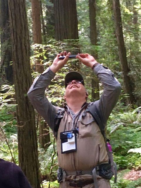 2018 06 14 Redwoods 8