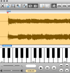 marker view from Transcribe! best guitar transcription software