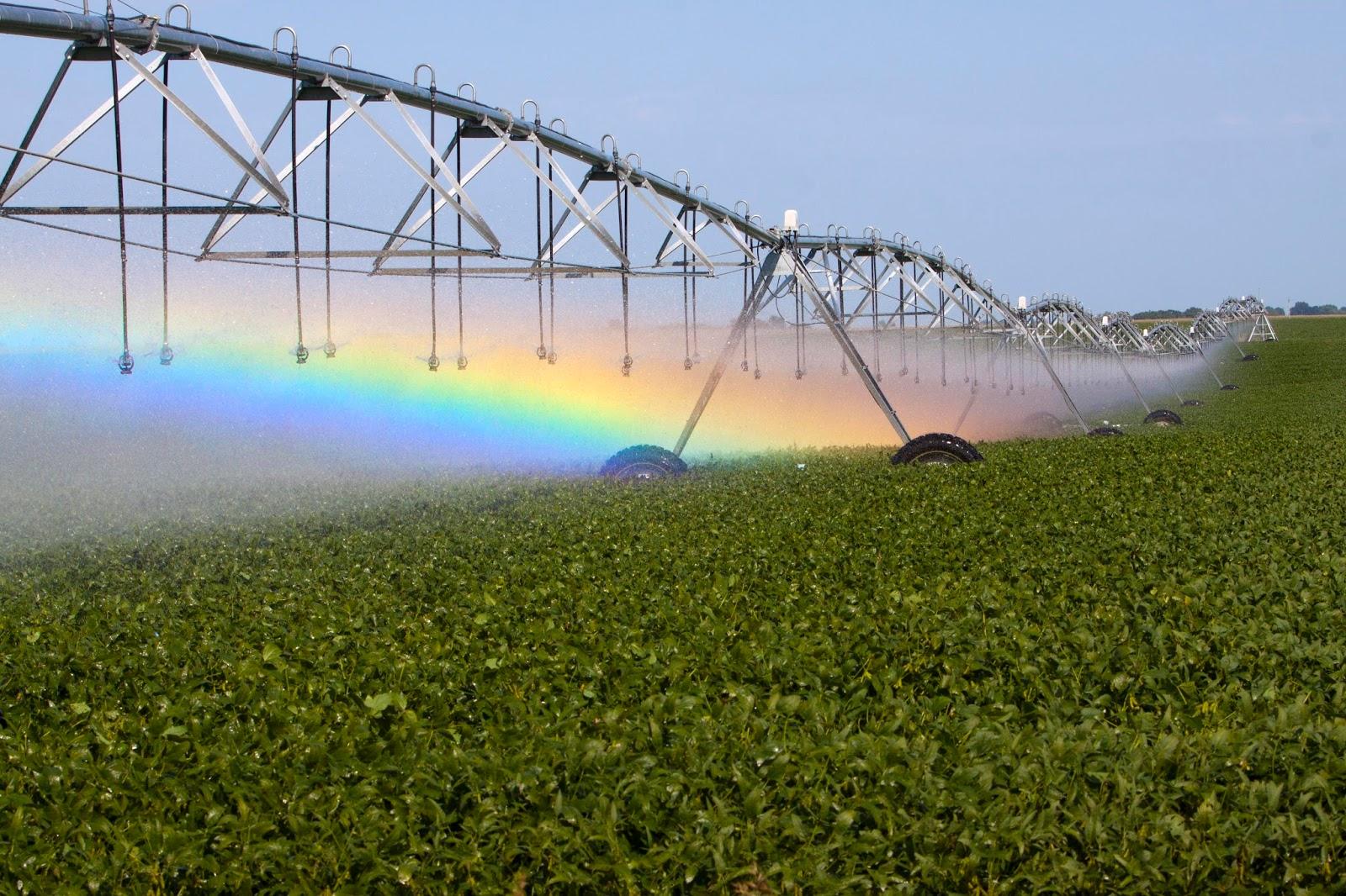 Southwest Groundwater Surveyors