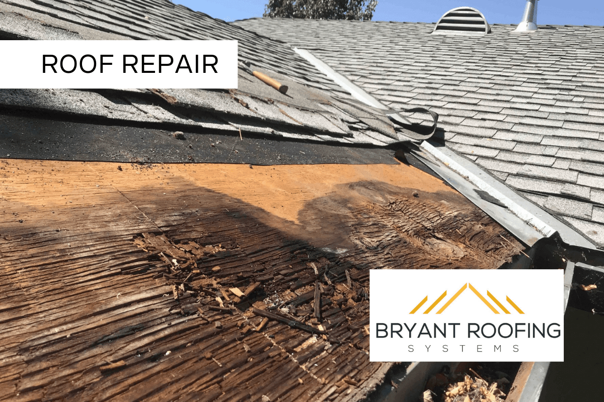 roof rot