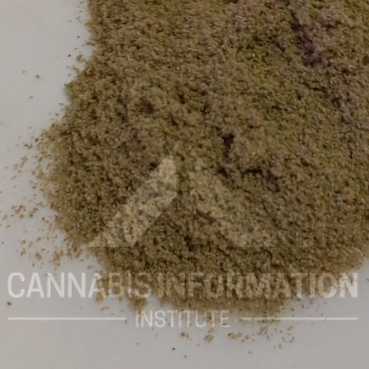 edibles with concentrates, cannabis edibles with kief, how to make kief edibles,how to decarboxylate kief for cannabis edibles, kief decarb, mason jar kief decarb, how to decarboxylate cannabis how to decarb for edibles, do you have to decarb cannabis for oil, cannabis oil, decarboxylation cannabis, decarboxylation recipe, decarboxylation convection oven, cannabinoid decarboxylation, decarboxylation kief, decarboxylation without heat, lemon juice decarboxylation, decarboxylation after extraction, decarboxylate before making oil, cannabis edibles