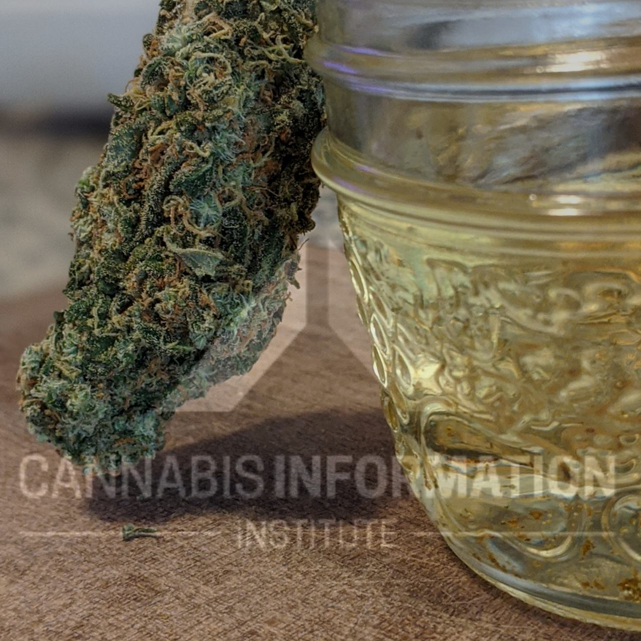 cannabis videos, instructional videos, cannabis recipe cards, cannabis edible recipes, cannabis edibles, how to make a test batch of cannabis oil, how to make potent canna coconut oil, how to make canna oil fast, what color should canna coconut oil be, flower to oil ratio, how to make cannabis oil, easy cannabis oil method, small batch cannabis oil, slow cooker cannabis oil, decarboxylation for cannabis edibles, decarbing weed for edibles, how to make weed oil small batch,