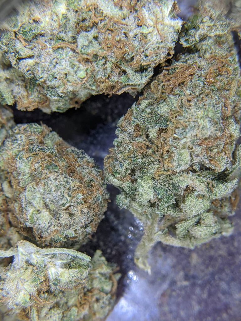 do strains matter when making edibles?, do strains in cannabutter make a difference, cannabis indica vs cannabis sativa in edibles, cannabis edibles differences between strains?, do strains matter in cannabis edibles?, cannabis edibles and different strains, cannabinoid content in edibles, thc and cbd content in edibles different strains, indica vs sativa, indica and sativa in edibles, is there any difference between sativa and indica edibles,