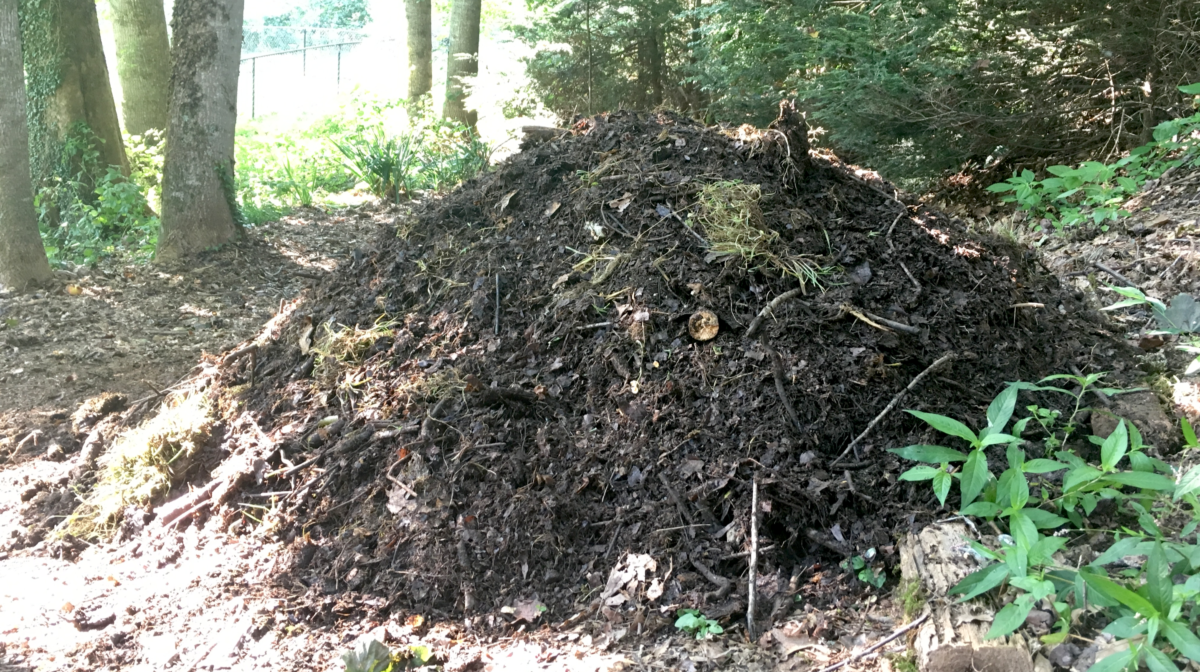 The Joys of Composting, or Start a Damn Compost Pile!