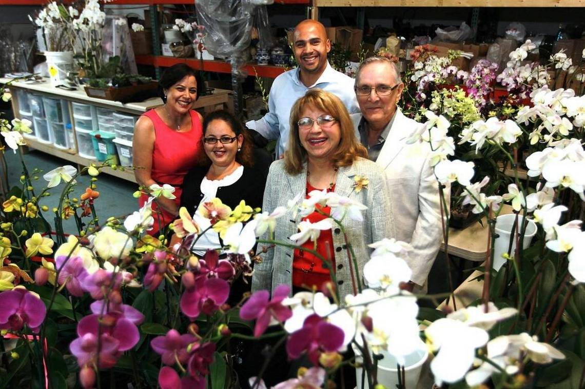 Orchid business seeks to thrive