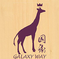 Galaxy Way Shop