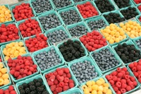 Loaded with antioxidants, fiber and phytonutrients, berries are a super food.