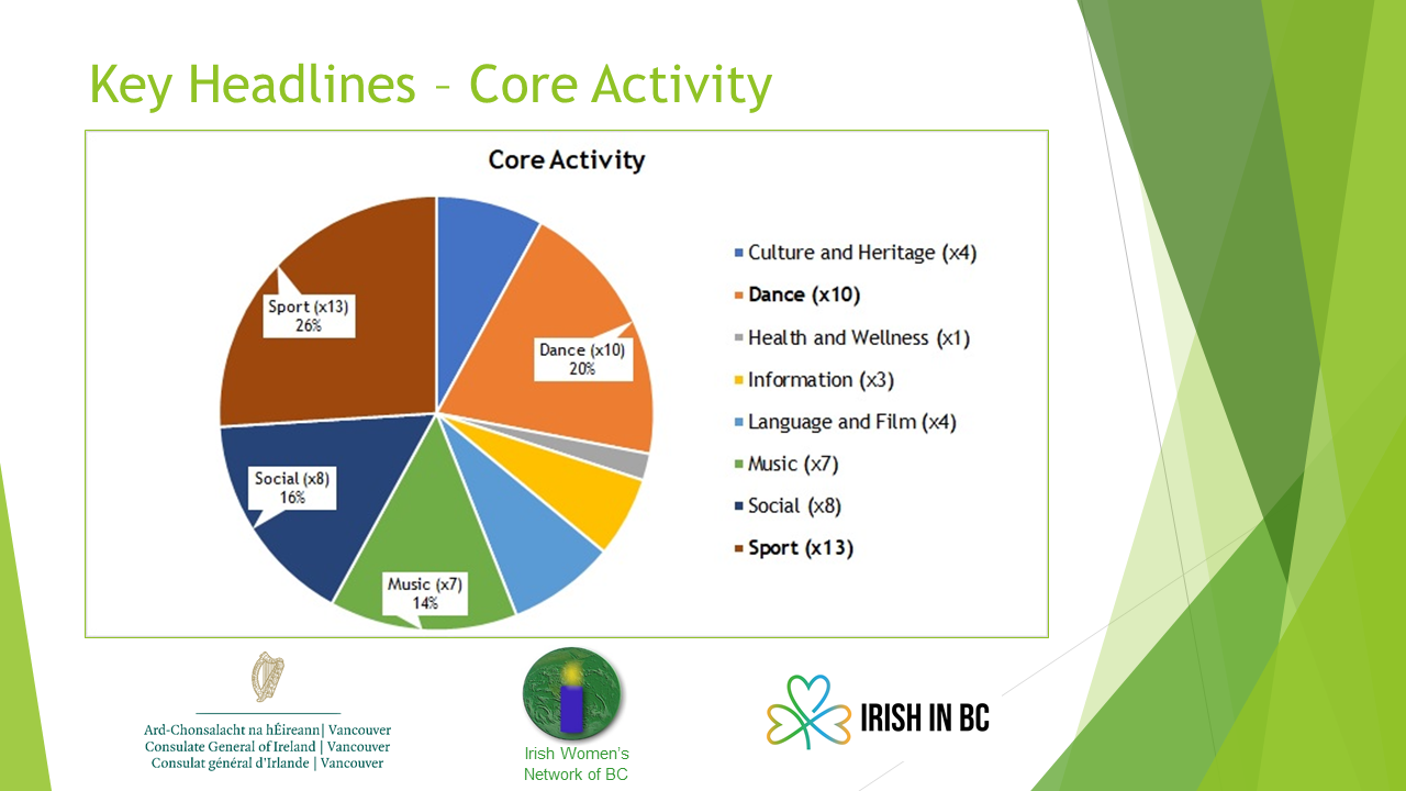 Core Activity of Irish Community Groups