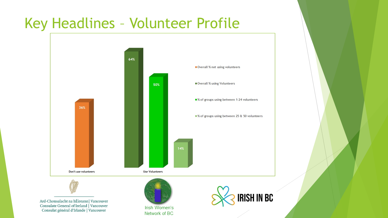 Volunteer Profile of Irish Community Groups