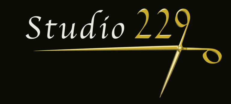 logo studio 229 seattle capitol hill