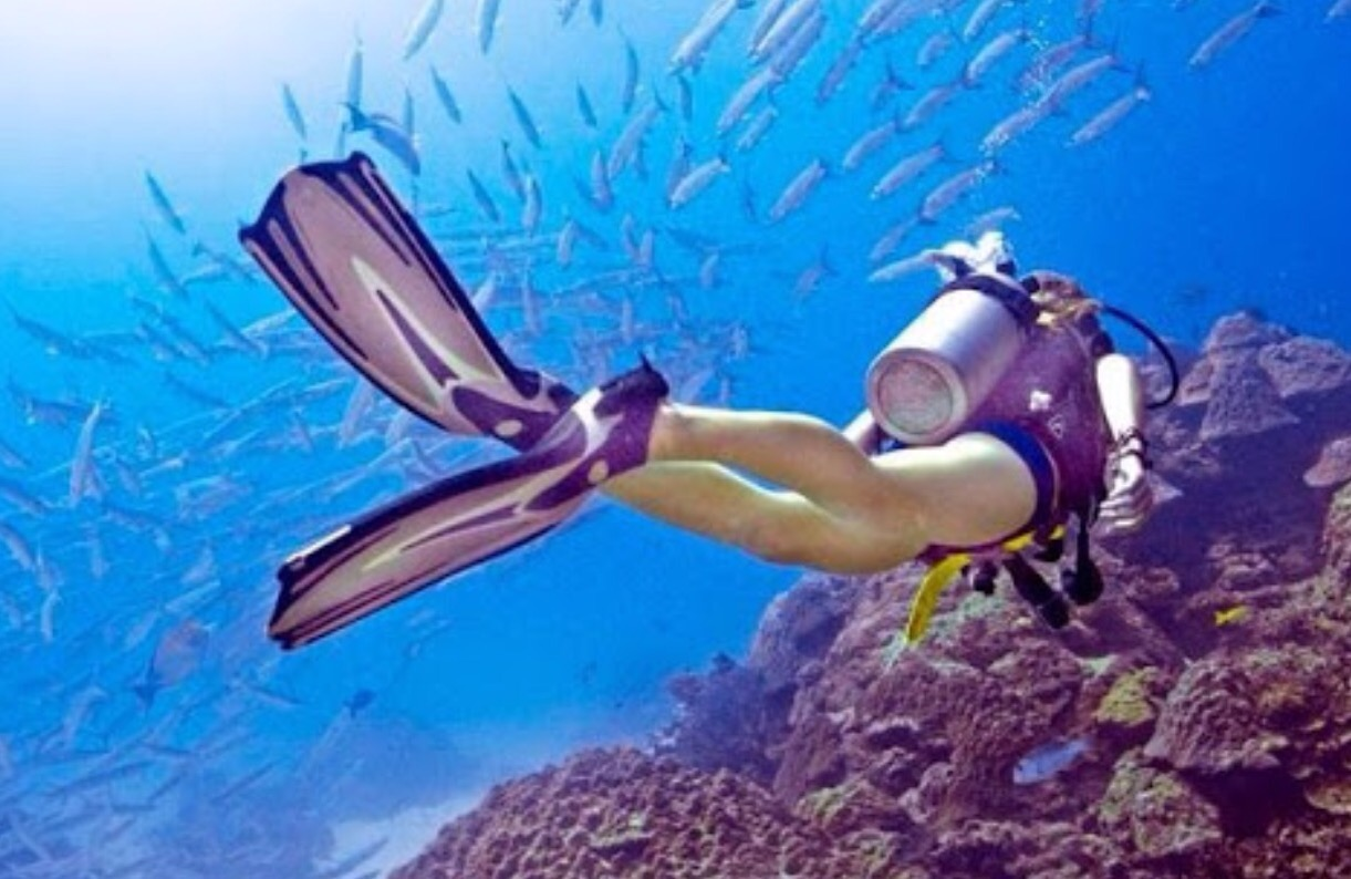 """Photo of """"Hey Em, I had a dream we were scuba diving!"""""""
