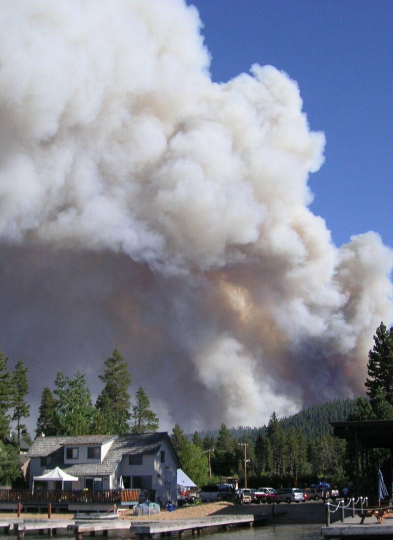 Angora Fire