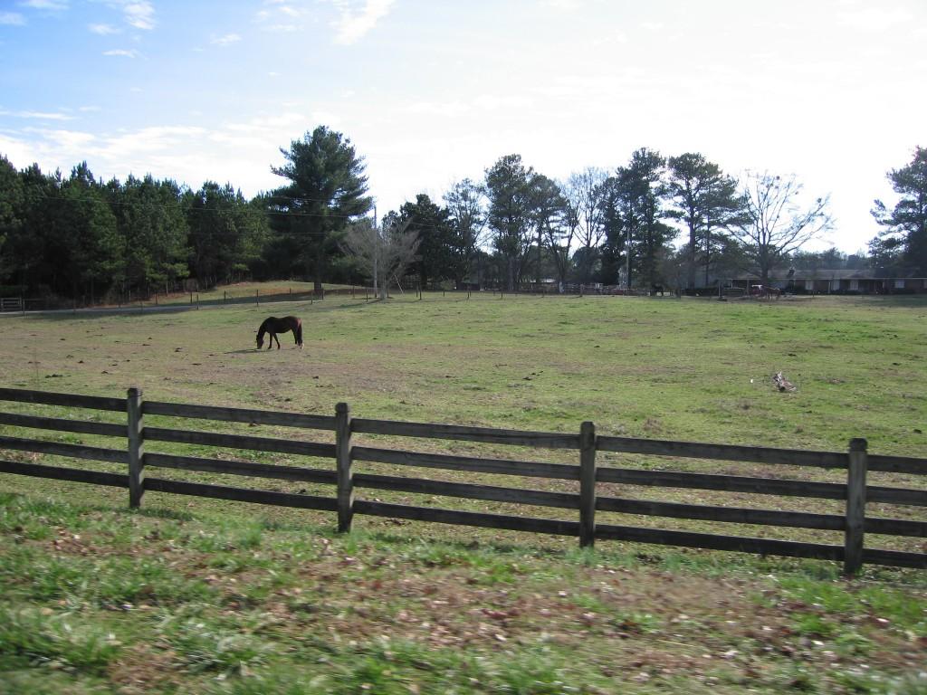 Milton Horse Farm