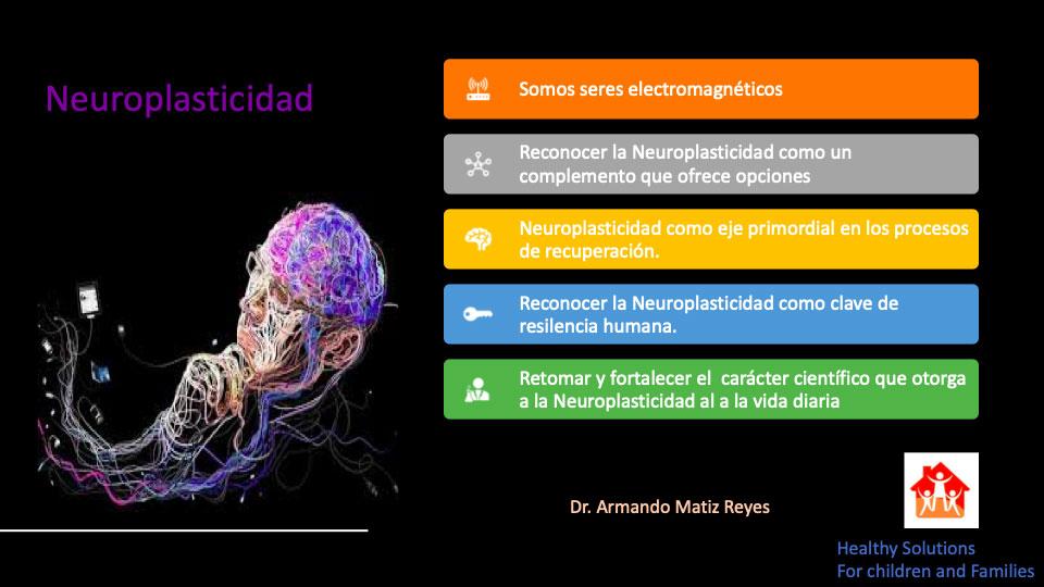 Taller Neuroplasticidad
