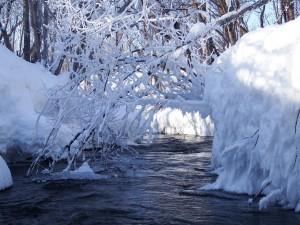 winter-2647238_1280