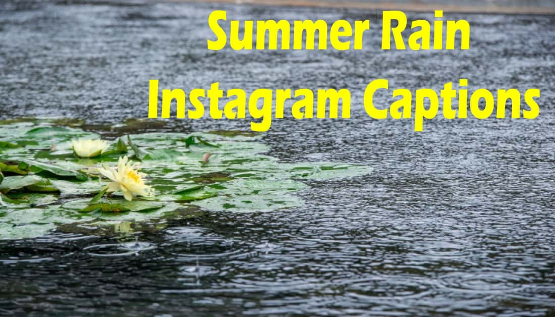 Summer Rain Instagram Captions – Express your love for Rain