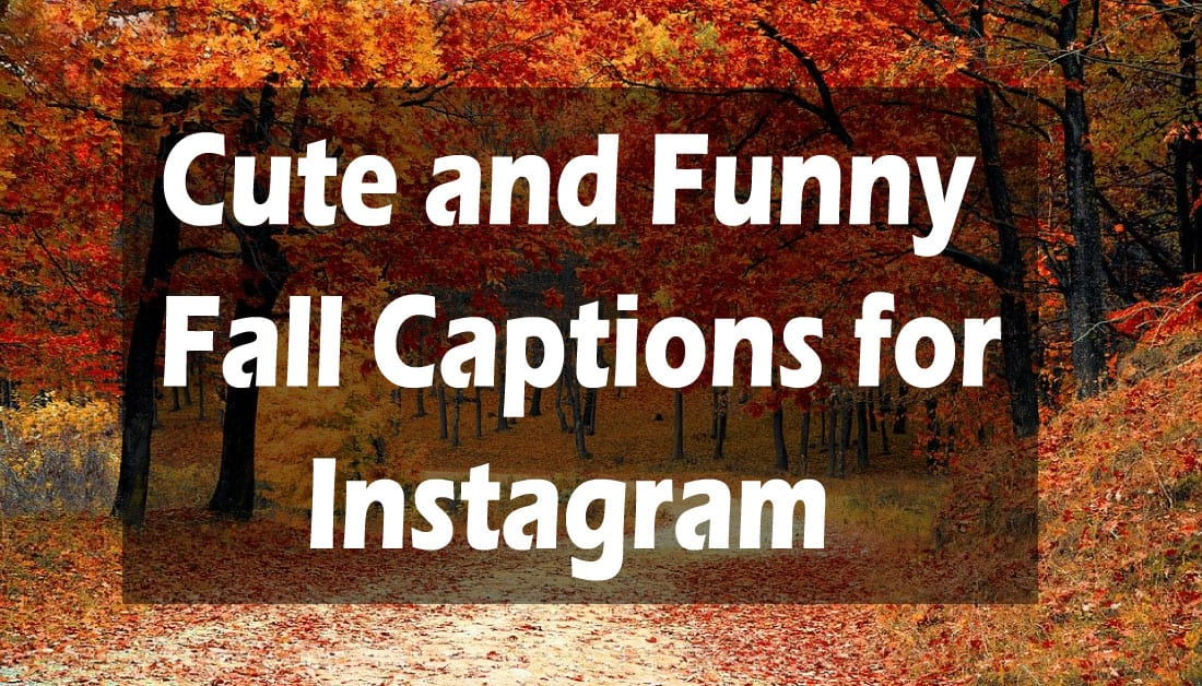 Funny & Cute Fall Instagram Captions for Fall 2020