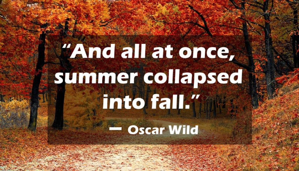 Short Fall Quotes