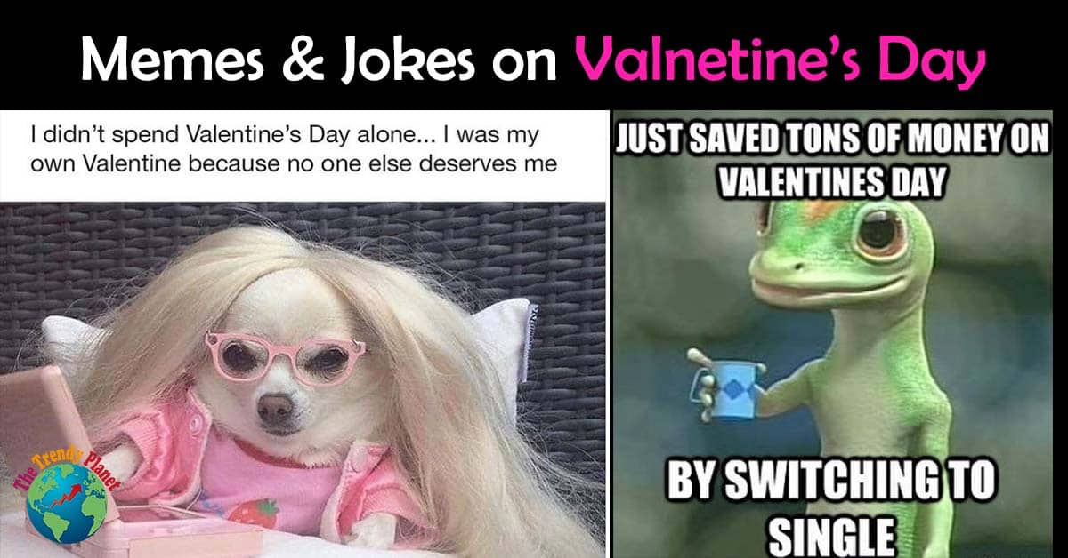 Funny Valentine's Day Memes for Singles 2021  – Valentine Jokes