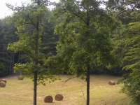 hay bales in front porch neighborhood