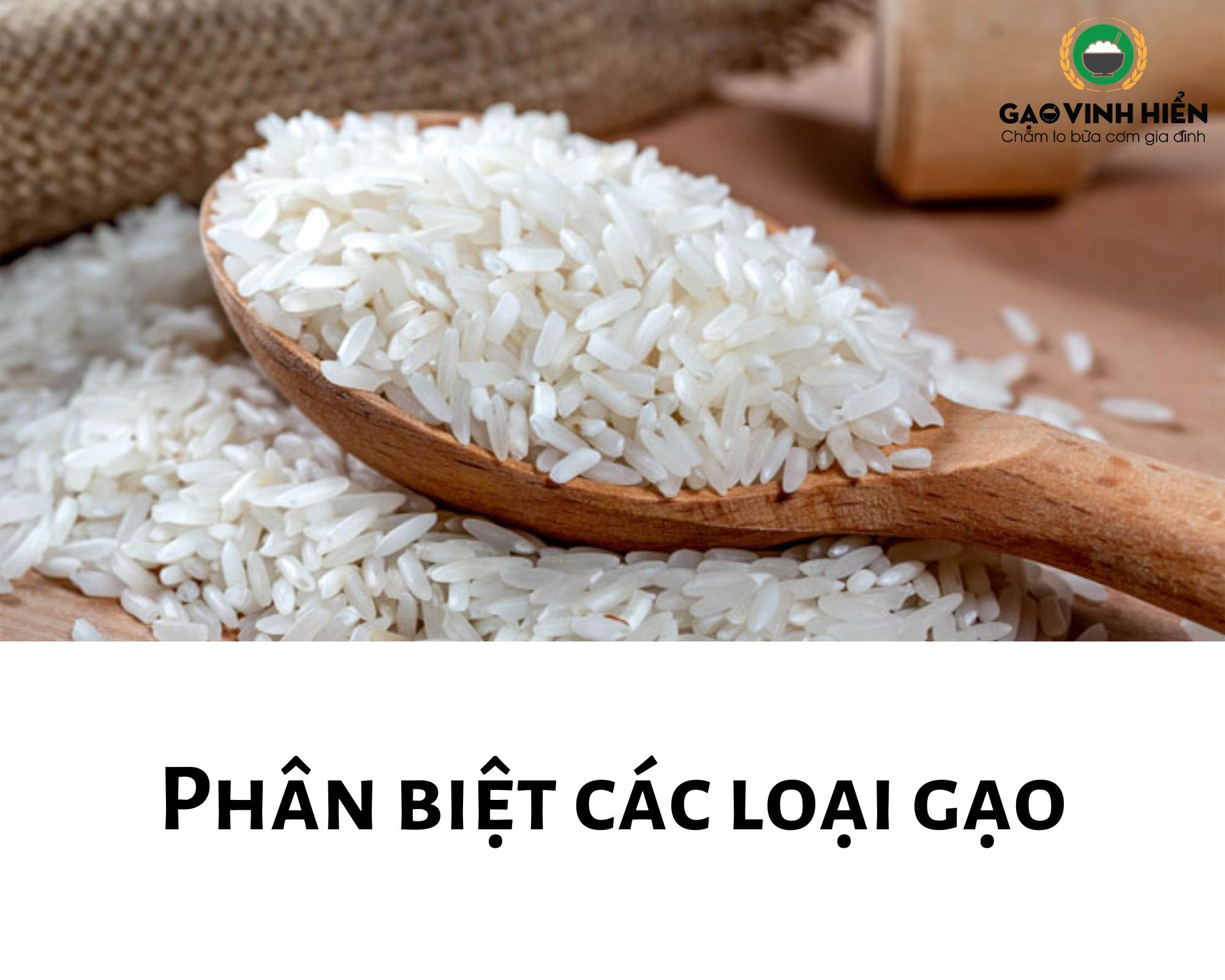 Phân-biệt-các-loại-gạo