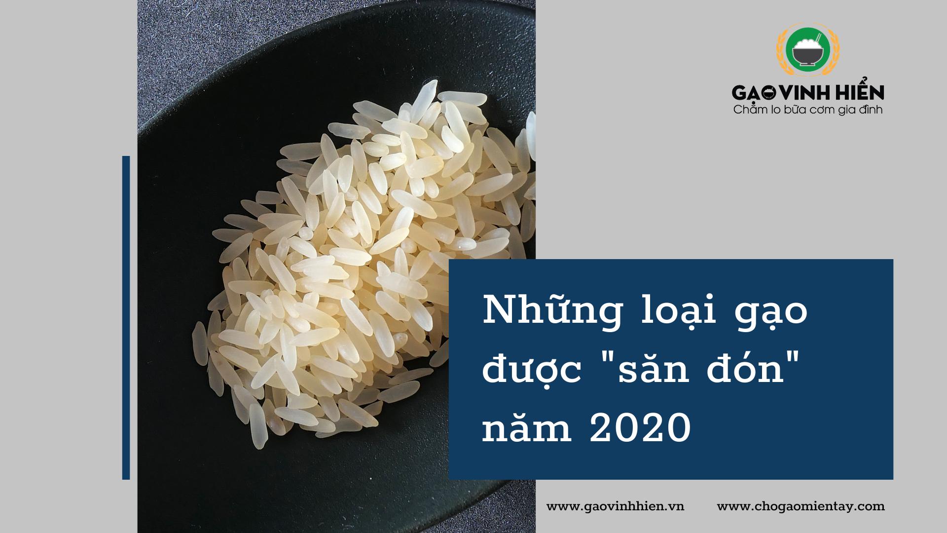 Những loại gạo được tìm kiếm nhiều nhất 2020