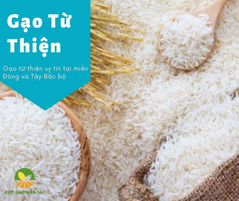 cung cấp gạo từ thiện uy tín