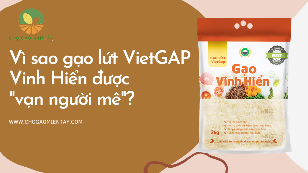 Gạo lứt VietGAP