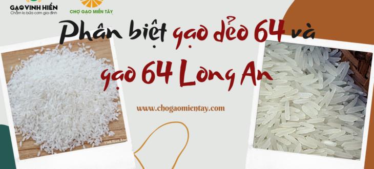 Phân biệt gạo 64 Long An (64 thơm dứa Gò Công) và gạo dẻo 64