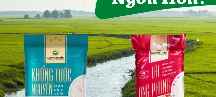 gạo khổng tước nguyên và gạo lài long phụng, gạo nào ngon hơn