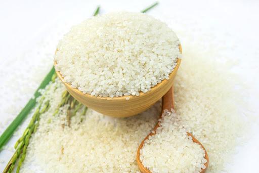 cung cấp gạo tấm