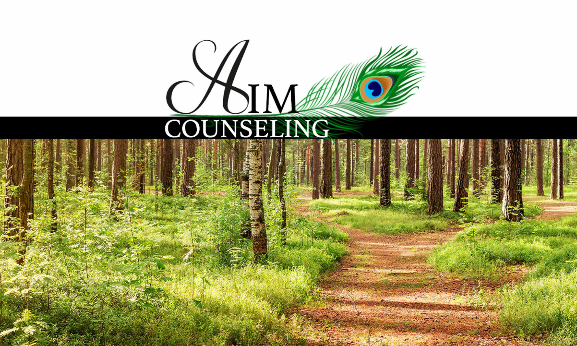 AIM Counseling Group