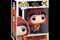 Hocus-Pocus-Mary-2