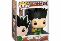 Hunter-X-Hunter-Gon-Freecss-2
