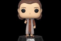 Princess-Leia-1