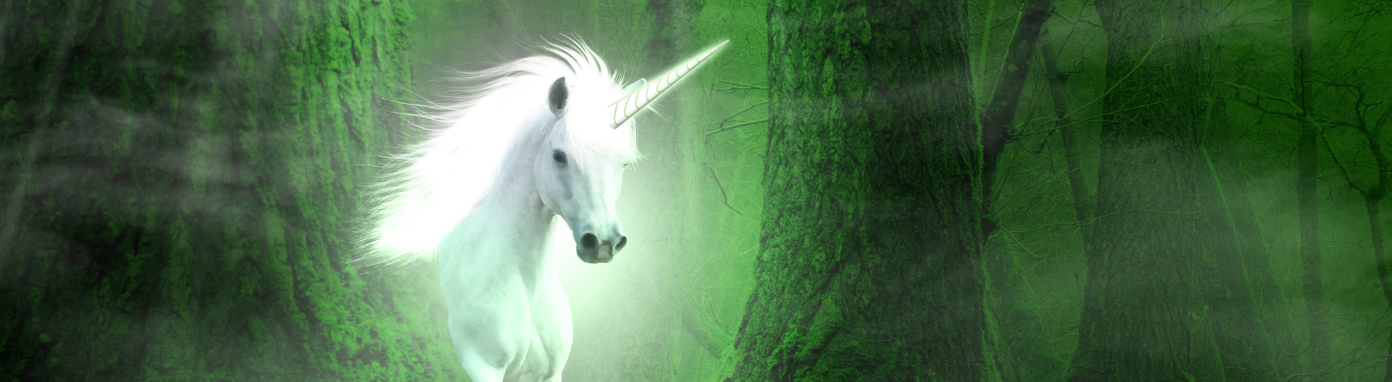 Data Scientists: Why You'll Never Catch the Unicorn
