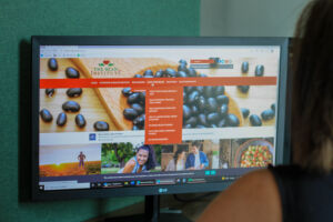 An image depicting a woman viewing the Bean Institute webpage