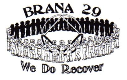 BRANA 29