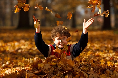 Choose the perfect autumn inspired giveaway.