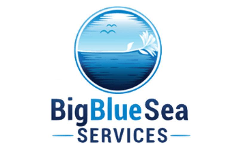 Big Blue Sea Services Logo