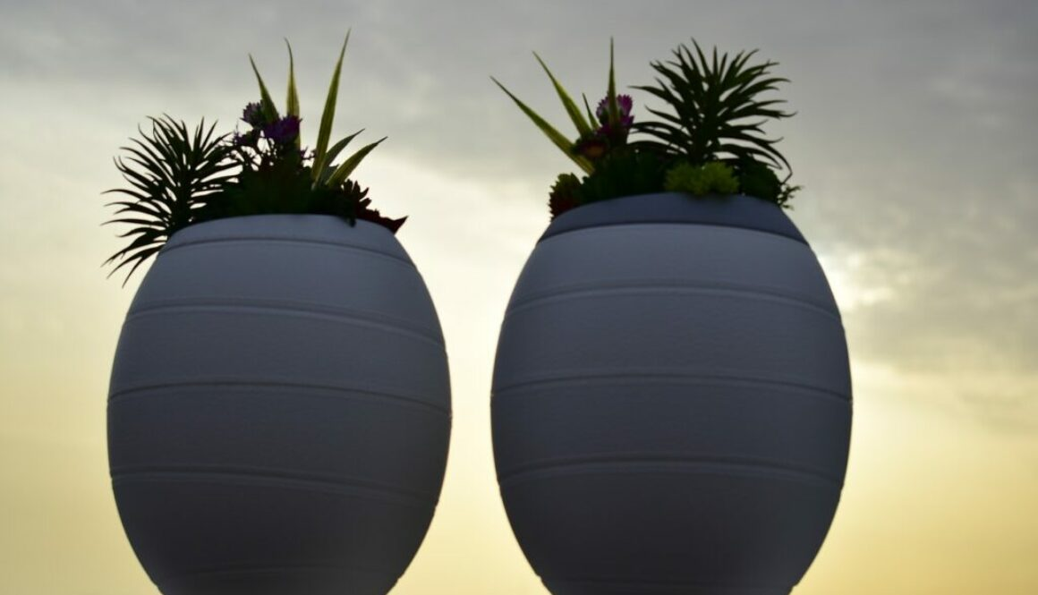 Eco-urns, an alternative to traditional burial.