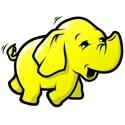 Hadoop and the Relational Database hadoop is maturing