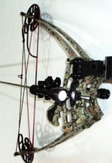 Delta vertical crossbow