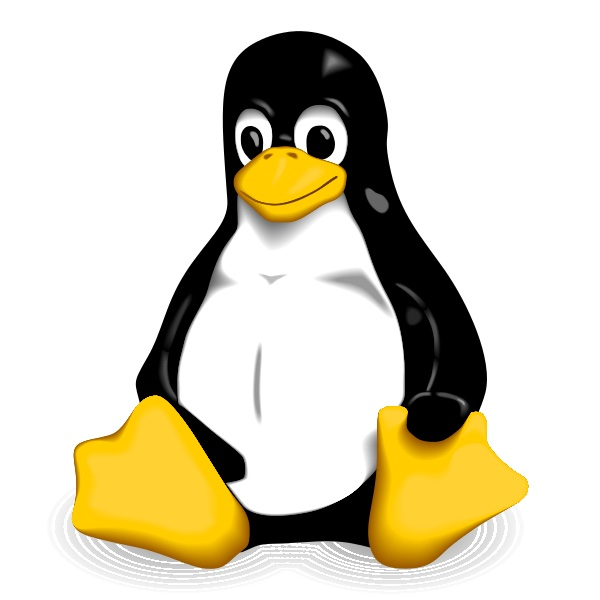 SAP BusinessObjects on Linux and Unix – part 5