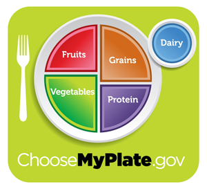 Visualizing the Perfect American Diet