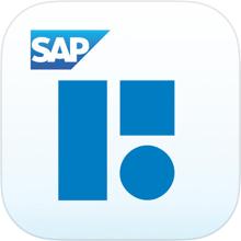 Mobile BI 6.3 Icon