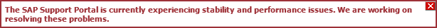 SAP Support Portal Not Feeling Well