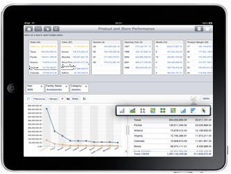 SAP Explorer iPad