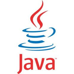 The Future of Web Intelligence and Java