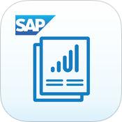 SAP Roambi Flow Icon